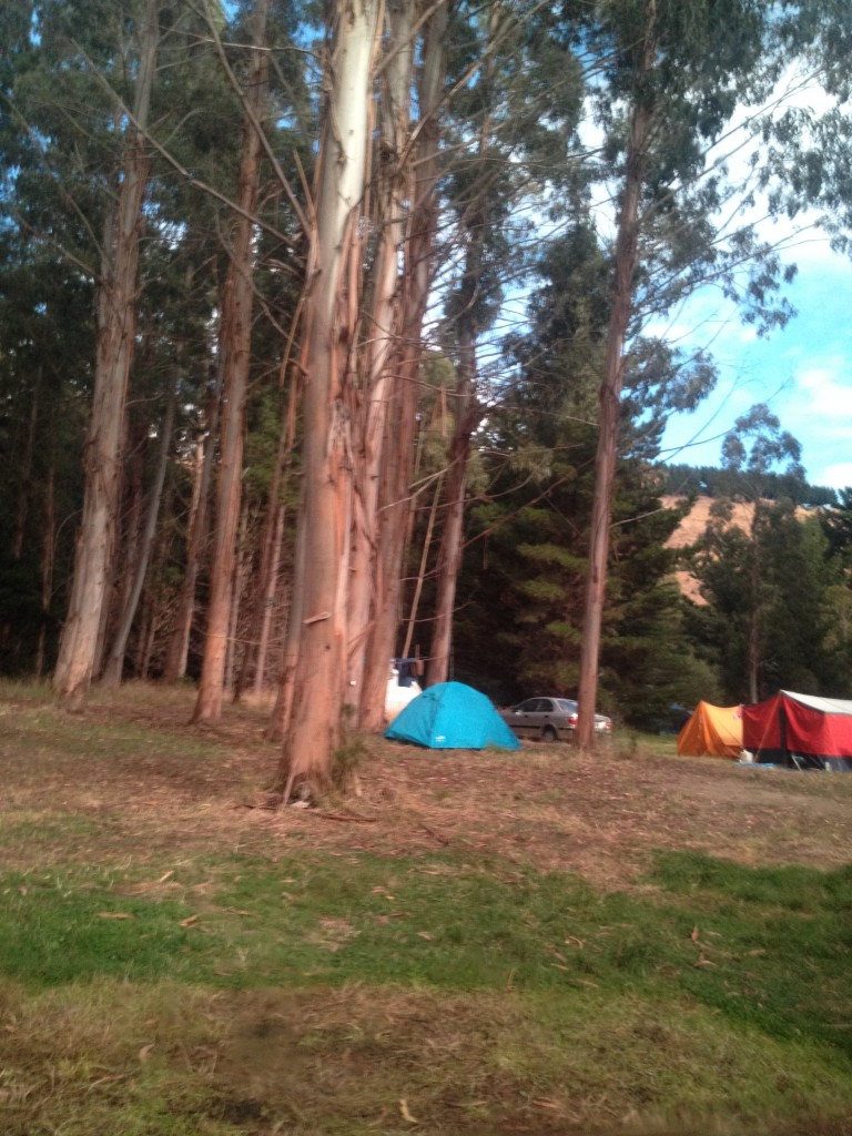 Okains Bay Campground