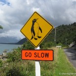 penguin-crossing-sign