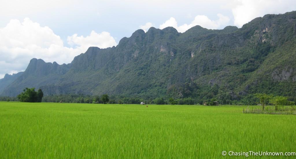 Konglor-rice-paddy
