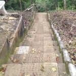 Nuts Huts Stairs Bohol