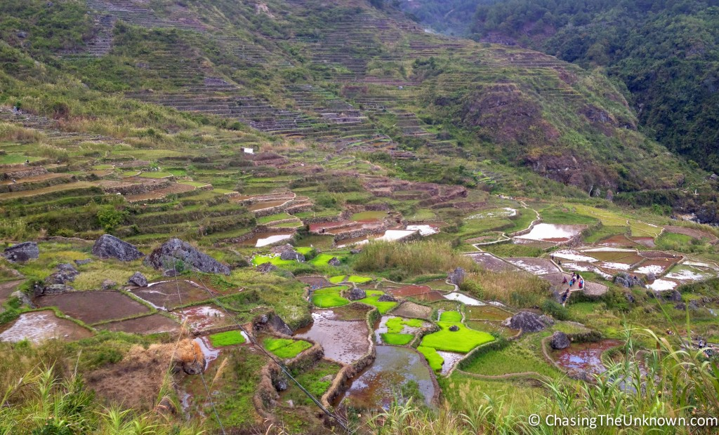 2000+ year-old rice terraces near Bomod-Ok