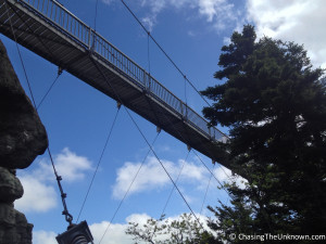 Mile-High-Swinging-Bridge-Grandfather-below