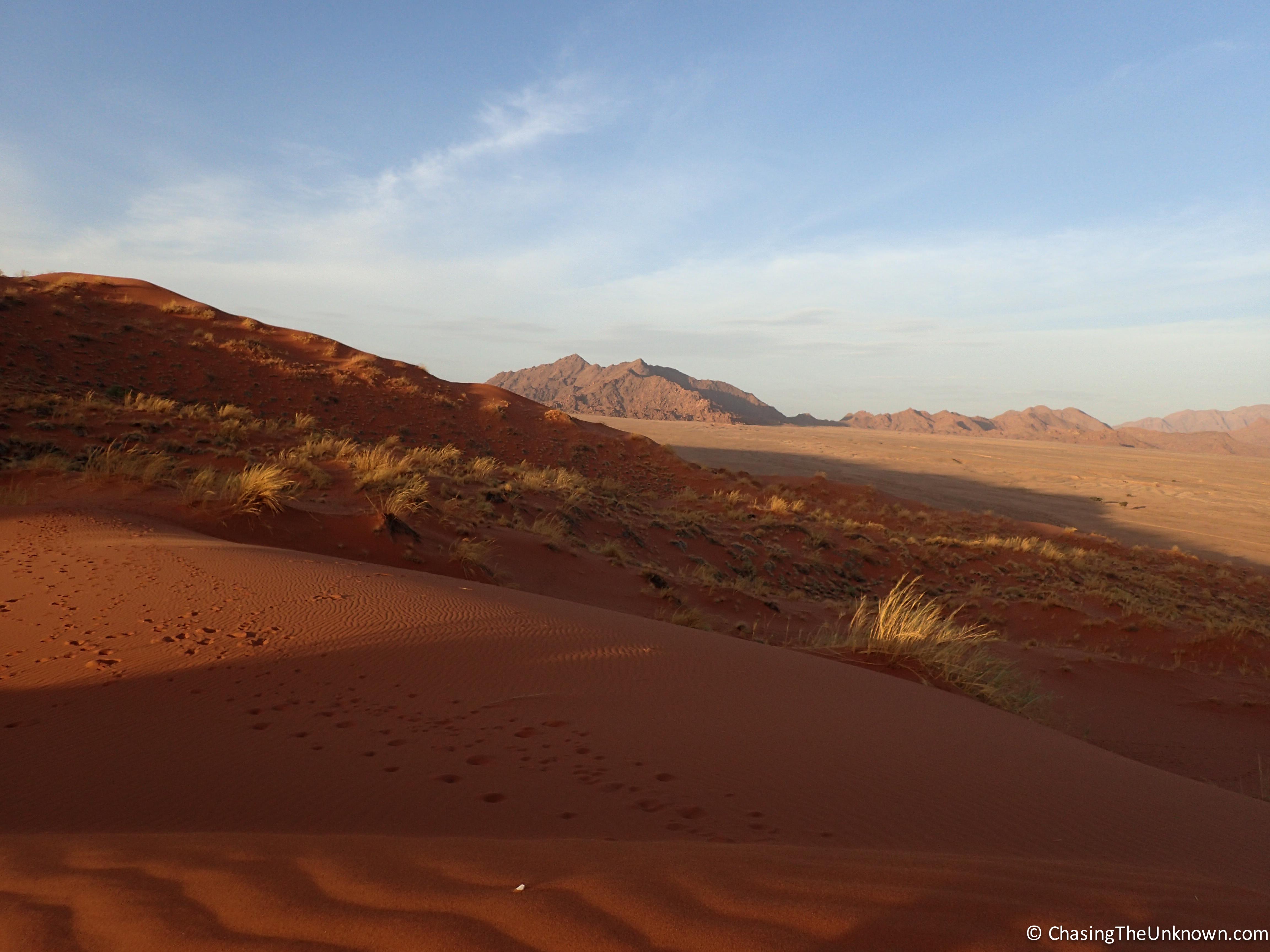 elim-dune