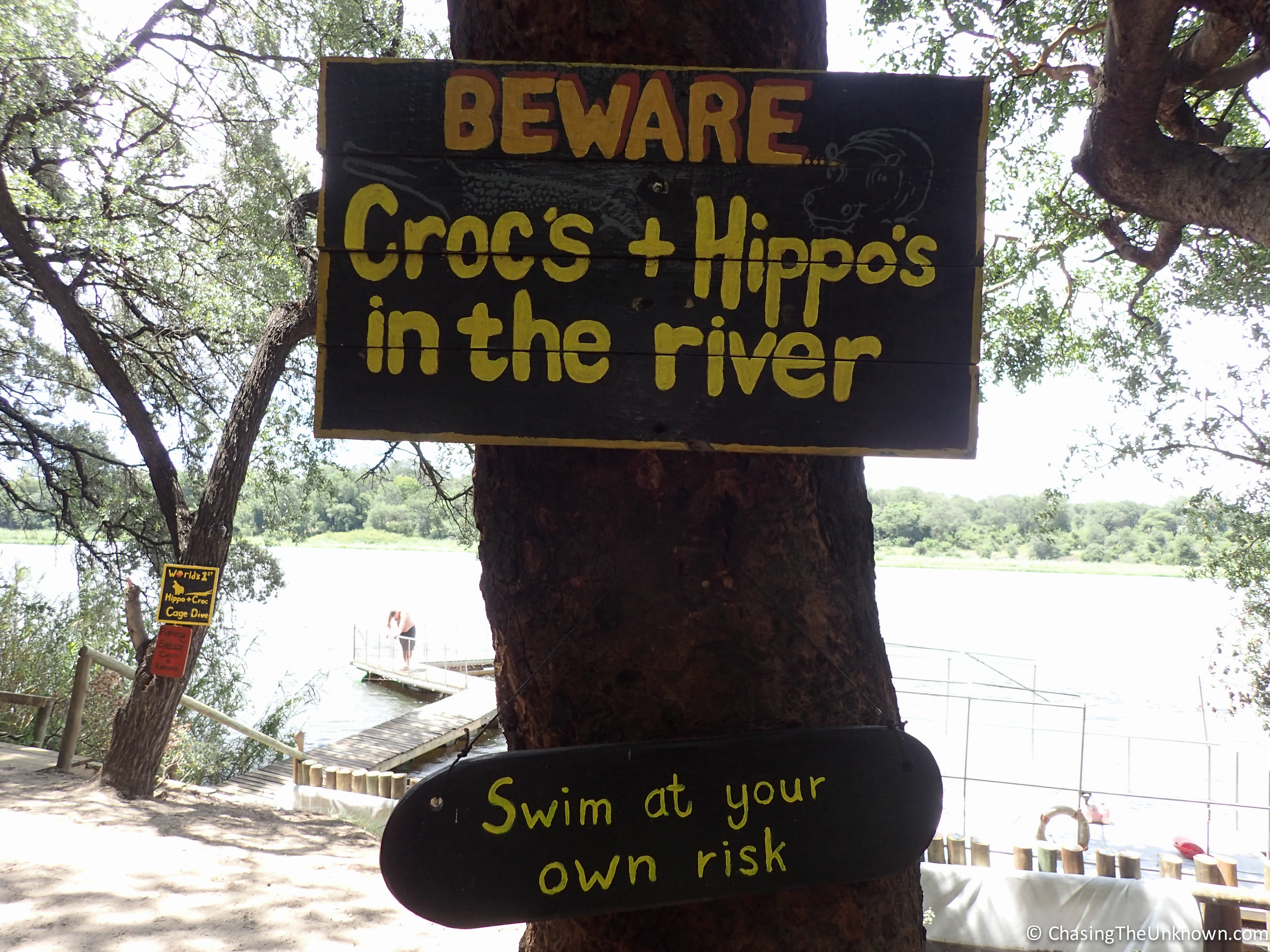 Not a joke - hippos serenaded me nightly while staying on the banks of the Okavango River.
